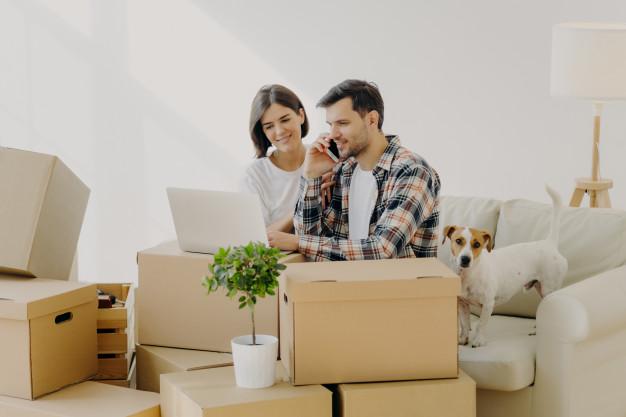 Article : Self stockage ou Costockage, le point avec Dolmen Box, service de location de box à Quimper